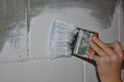 paint_basement_wall_250_166_80.jpg